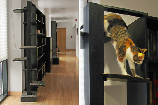 Custom Designed Interior Elements for Living with Cats