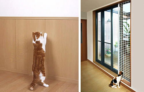 Japanese Cat-friendly House Design