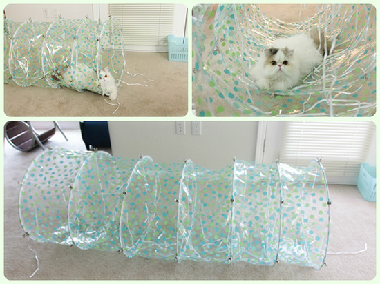 DIY Cat Tunnel