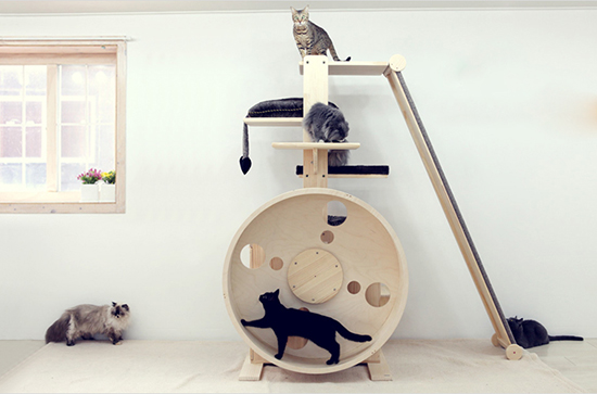 Incredible Cat Towers From Korea Hauspanther