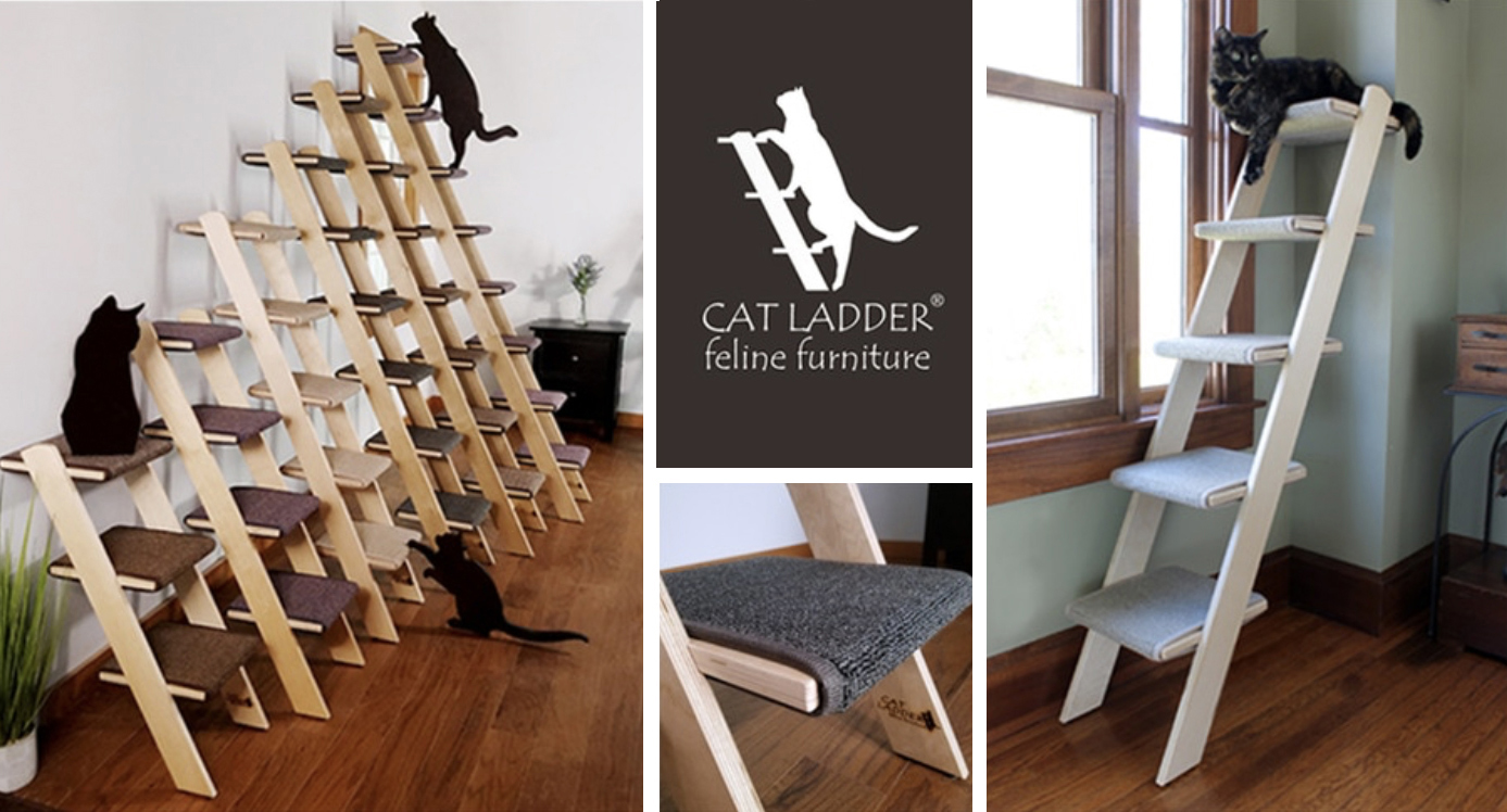 Cat Ladder Great Alternative To A Traditional Cat Tree