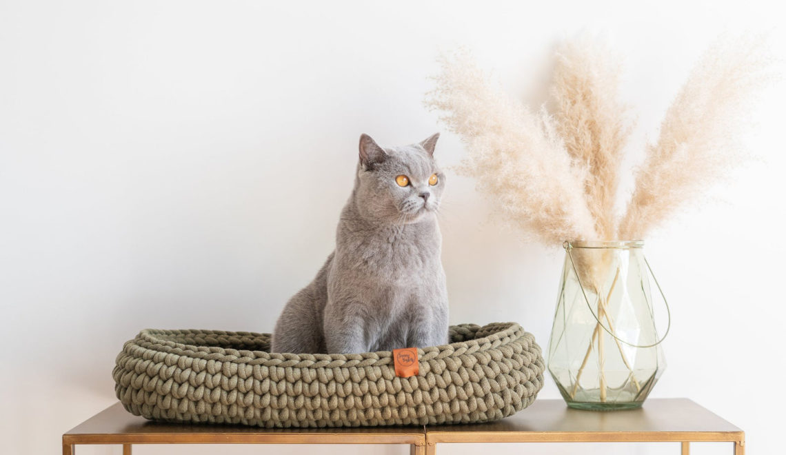 Chunky Crocheted Cat Beds from The Netherlands