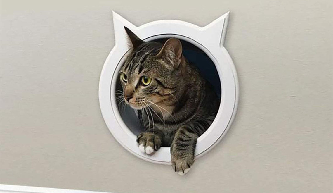 New Options from The Kitty Pass Interior Cat Door Make DIY Catification Easy!