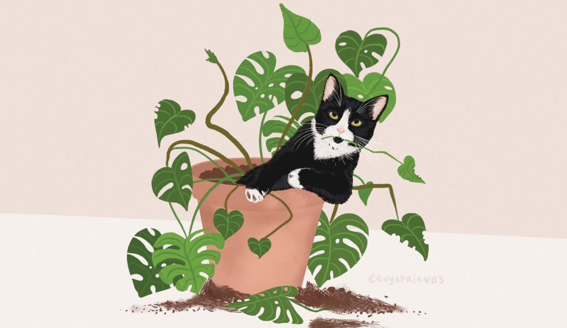 20 Art Prints Featuring Cats & Plants For a Quick Visual Vacation